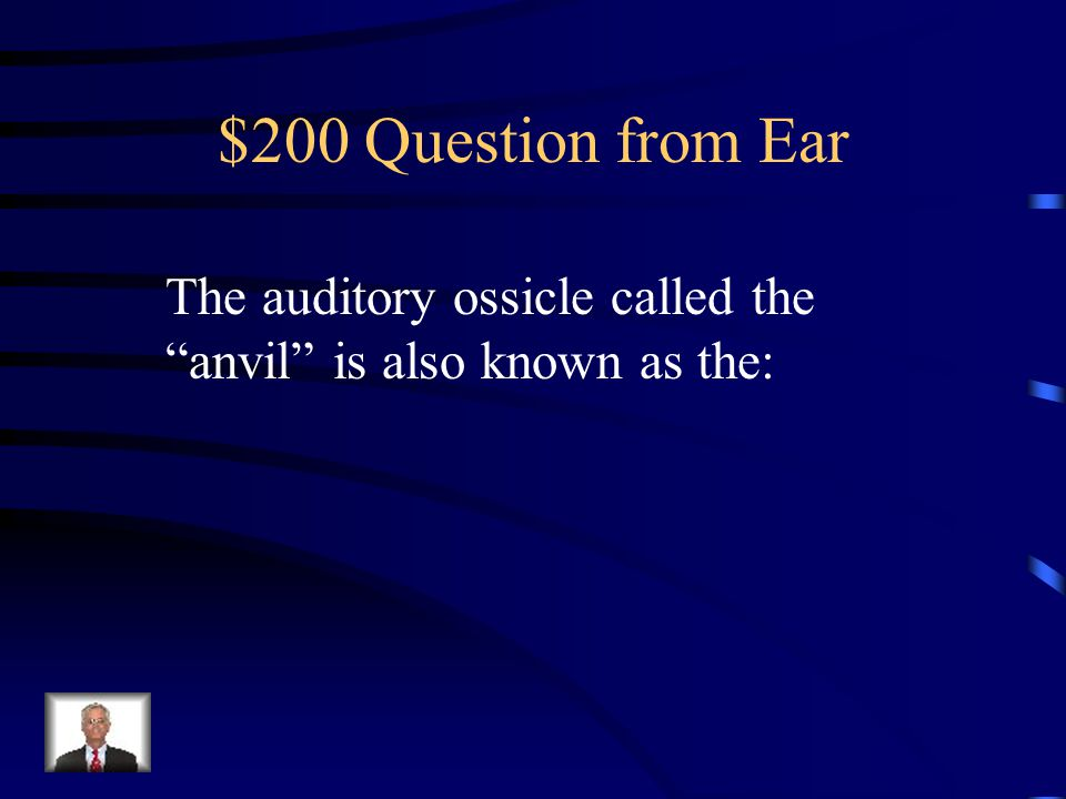 $100 Answer from Ear Tympanic Membrane