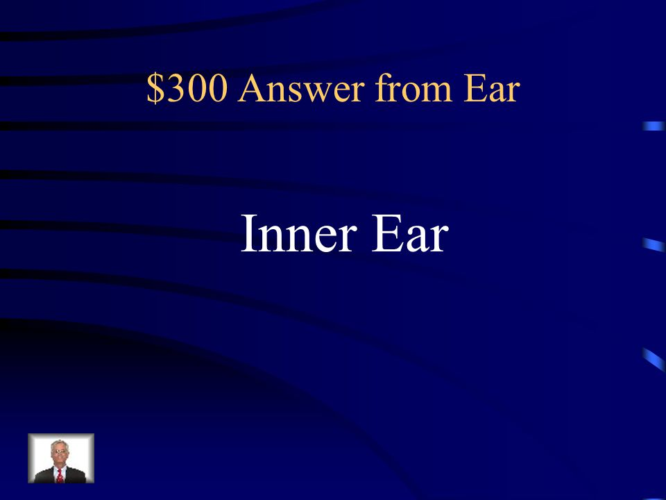 $300 Question from Ear Equilibrium receptors are located In the: