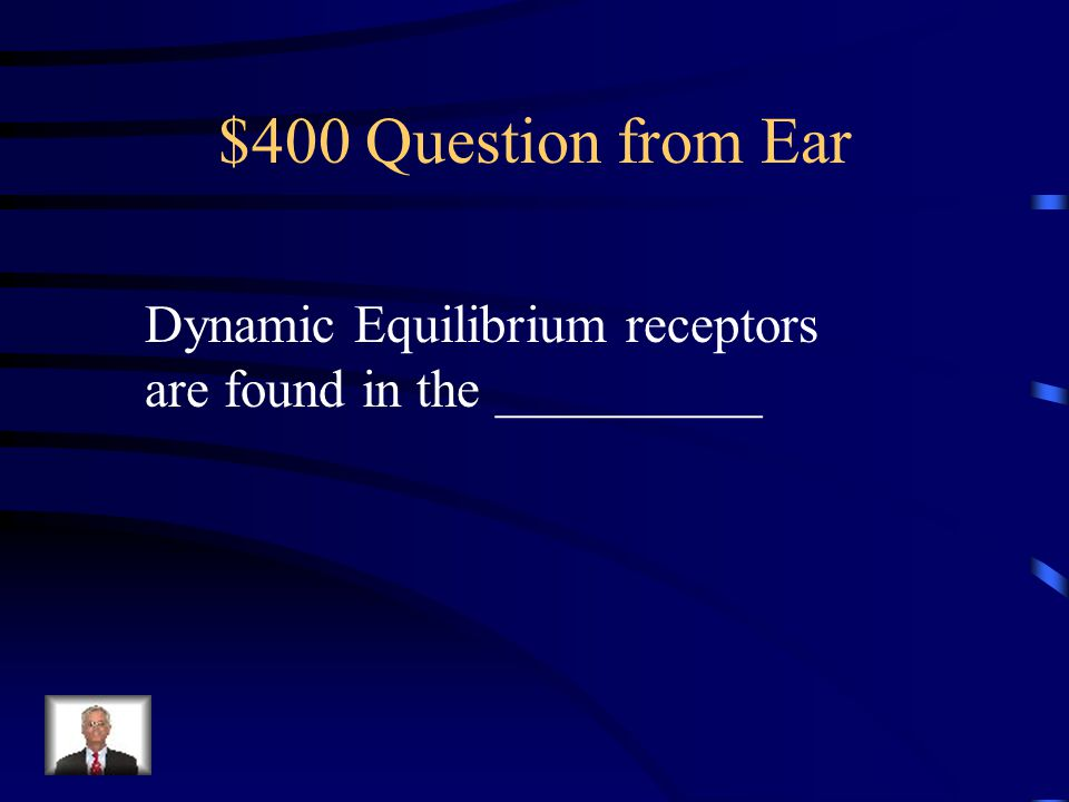 $300 Answer from Ear Inner Ear