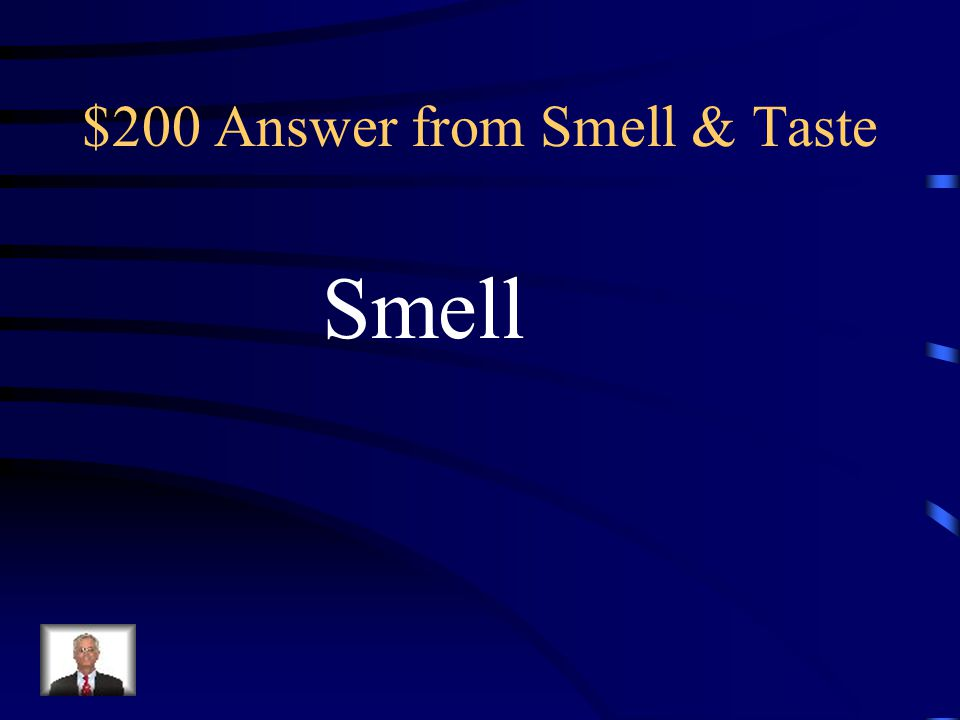 $200 Question from Smell & Taste Gustatory hairs are to taste as Olfactory hairs are to ________