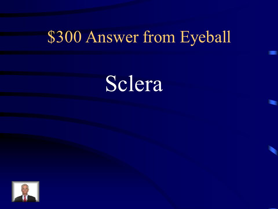 $300 Question from Eyeball Tough, white connective tissue Forms this portion of the fibrous Layer of the eye.