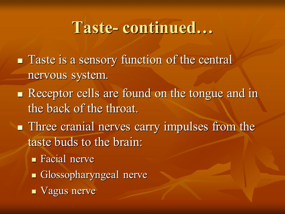 Taste- continued… Taste is a sensory function of the central nervous system.