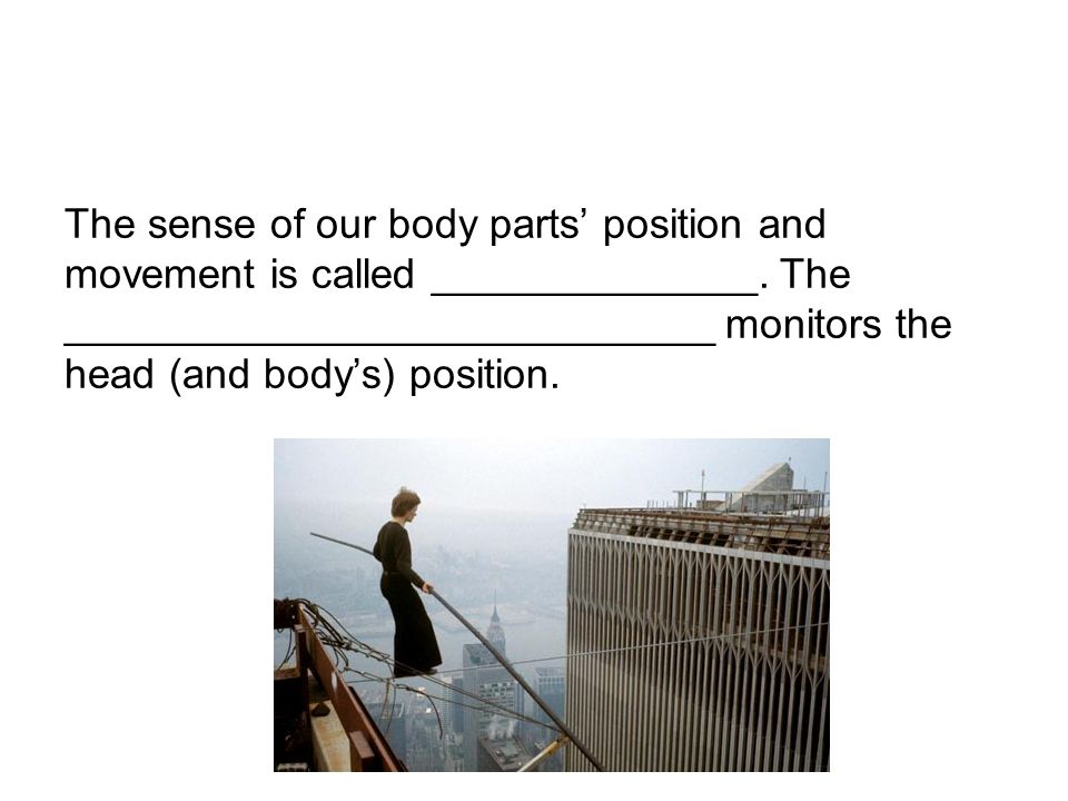 The sense of our body parts' position and movement is called ______________.