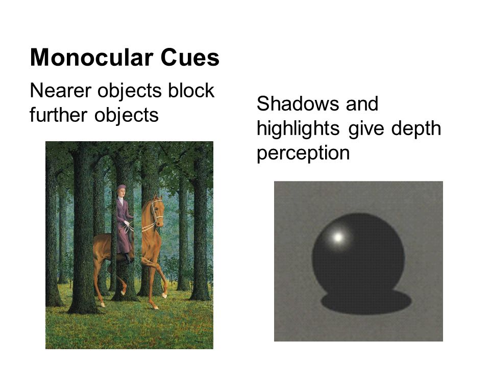 Monocular Cues Nearer objects block further objects Shadows and highlights give depth perception