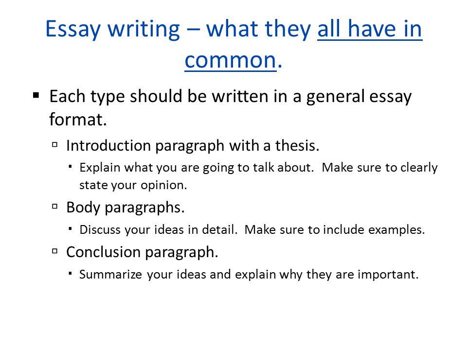 explain essay writing