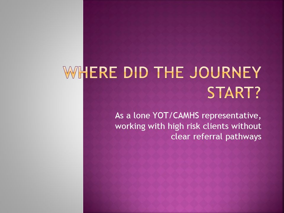 As a lone YOT/CAMHS representative, working with high risk clients without clear referral pathways