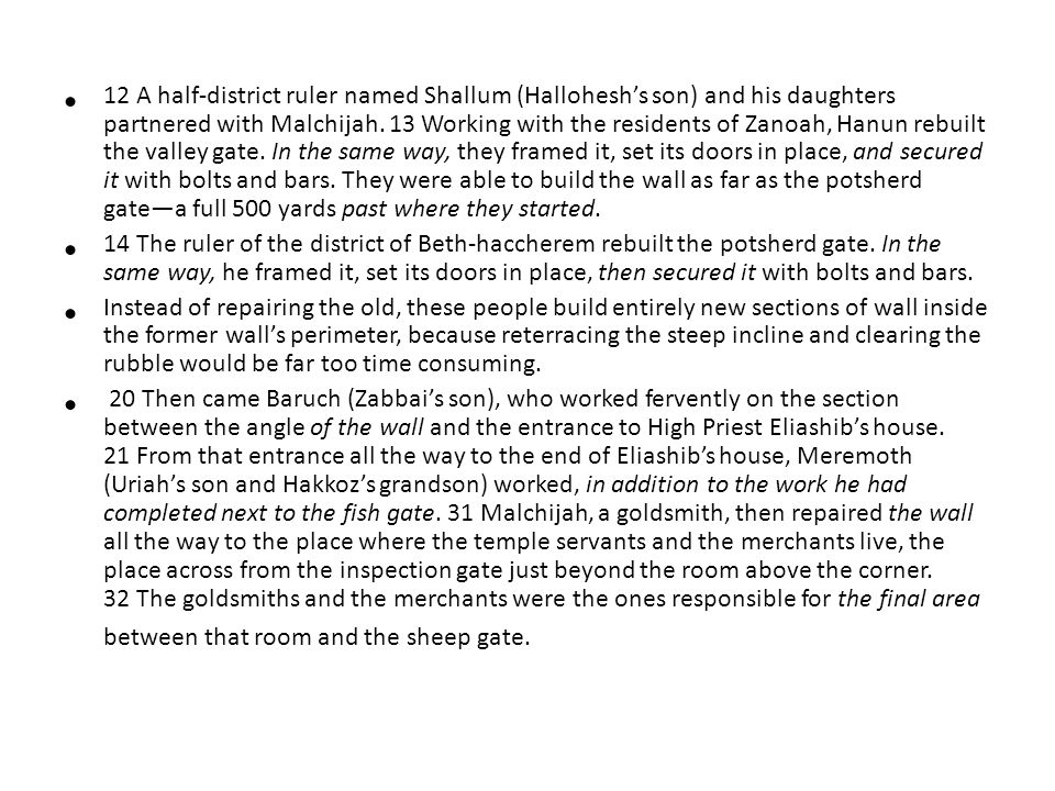 12 A half-district ruler named Shallum (Hallohesh's son) and his daughters partnered with Malchijah.