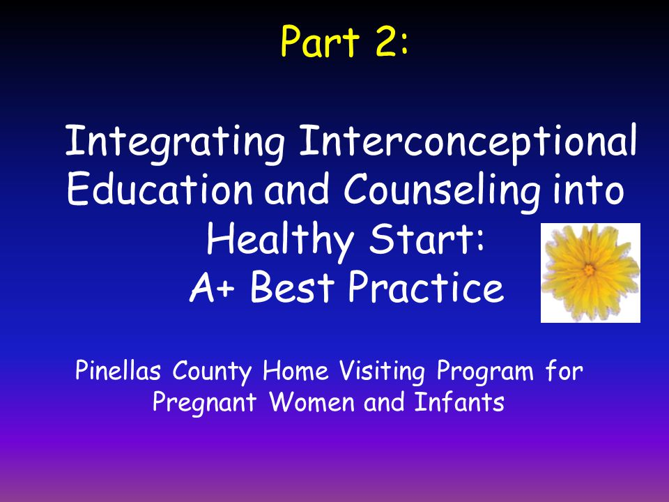Part 2: Integrating Interconceptional Education and Counseling into Healthy Start: A+ Best Practice Pinellas County Home Visiting Program for Pregnant Women and Infants