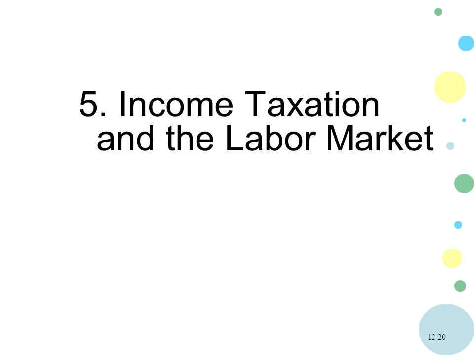 Income Taxation and the Labor Market
