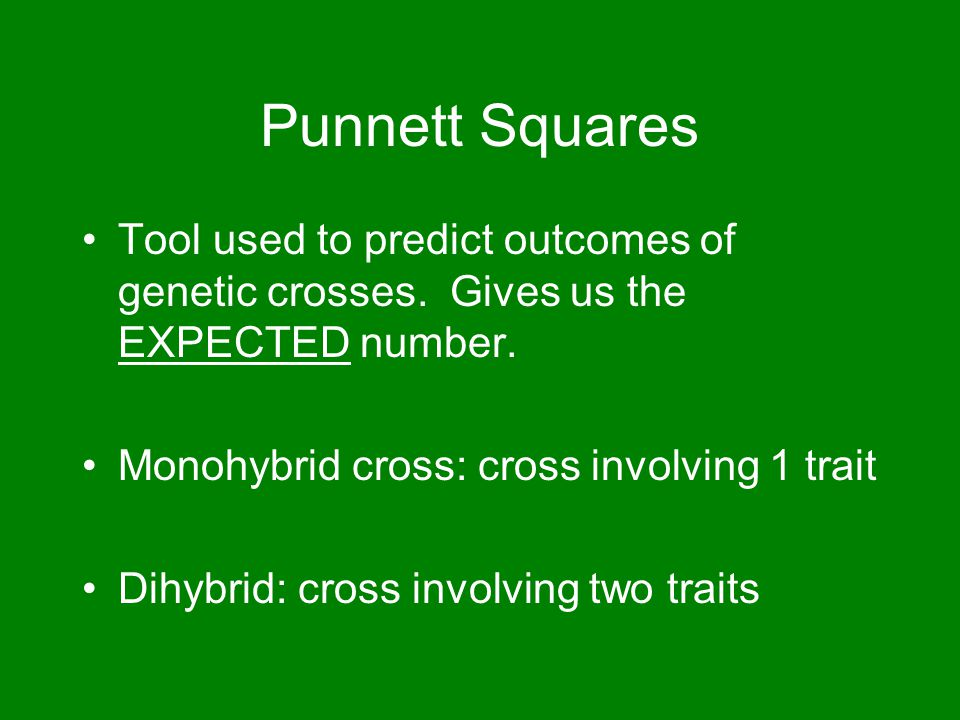 Punnett Squares Tool used to predict outcomes of genetic crosses.