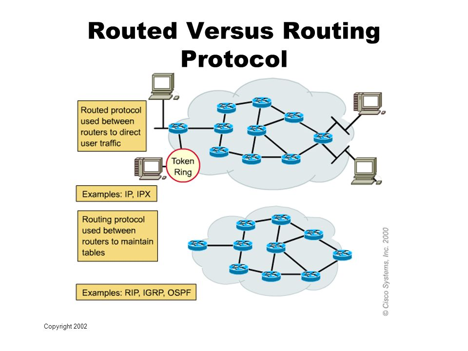 Copyright 2002 Routed Versus Routing Protocol