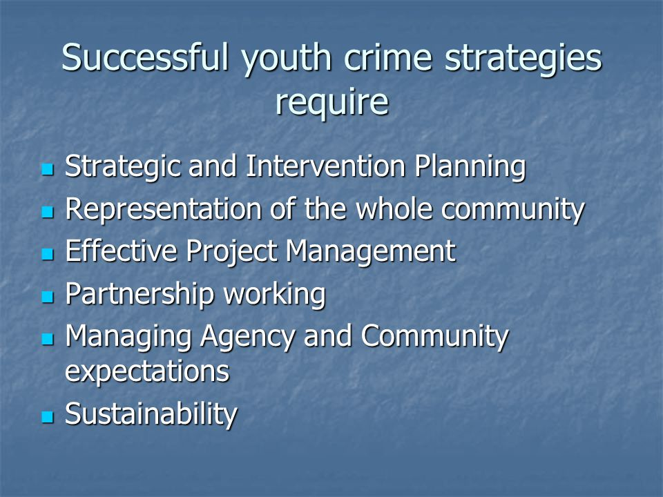 Successful youth crime strategies require Strategic and Intervention Planning Strategic and Intervention Planning Representation of the whole community Representation of the whole community Effective Project Management Effective Project Management Partnership working Partnership working Managing Agency and Community expectations Managing Agency and Community expectations Sustainability Sustainability