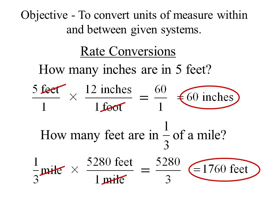 Rate Conversions How Many Inches Are In 5 Feet