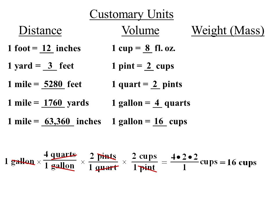 Customary Units Distancevolumeweight M 1 Foot ___ Inches 12 1 Yard ___