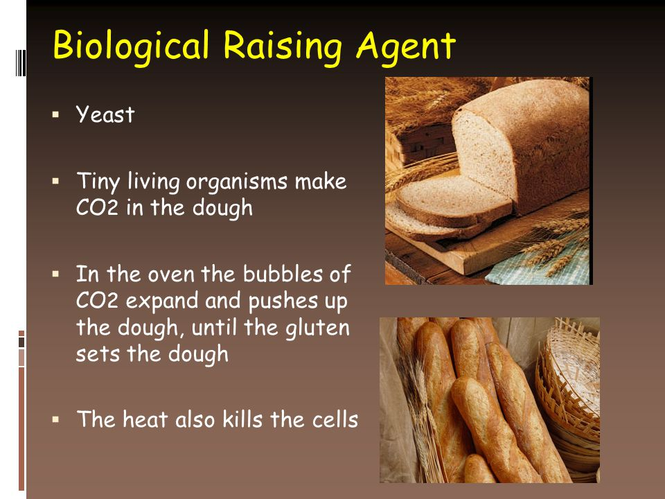 Biological Raising Agent  Yeast  Tiny living organisms make CO 2 in the dough  In the oven the bubbles of CO 2 expand and pushes up the dough, until the gluten sets the dough  The heat also kills the cells
