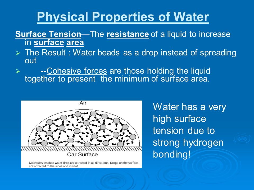 Physical Properties of Water Surface Tension—The resistance of a liquid to increase in surface area   The Result : Water beads as a drop instead of spreading out   --Cohesive forces are those holding the liquid together to present the minimum of surface area.