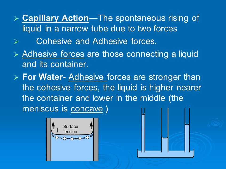  Capillary Action—The spontaneous rising of liquid in a narrow tube due to two forces   Cohesive and Adhesive forces.