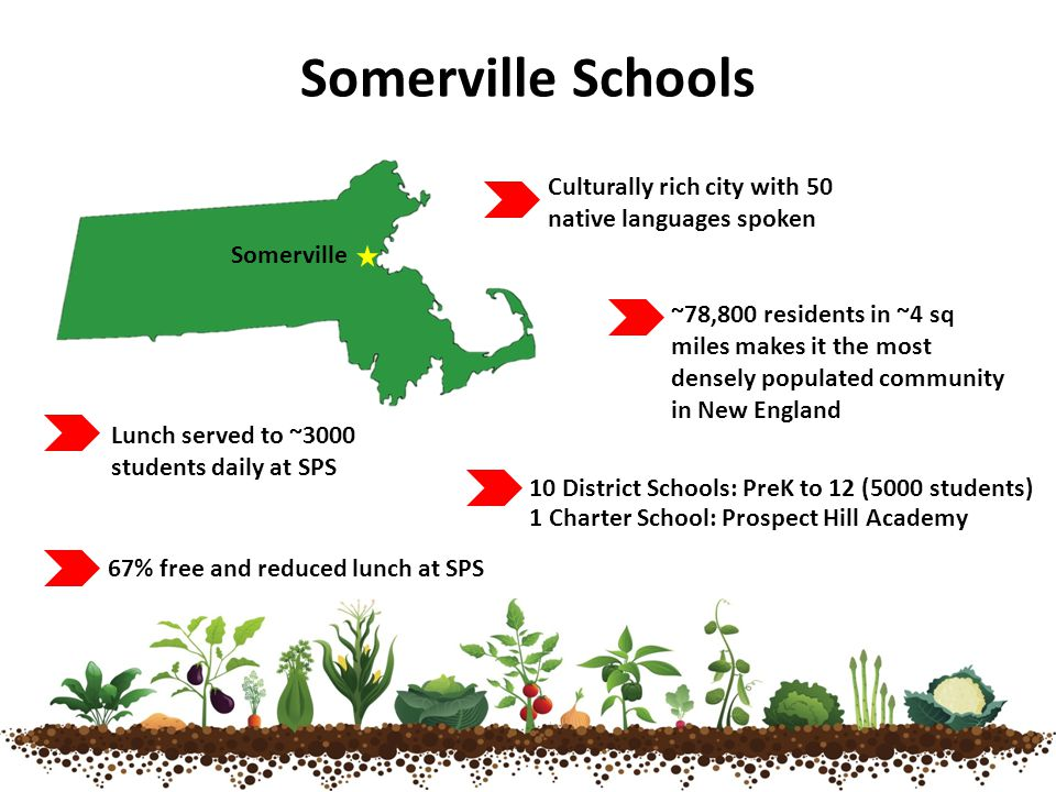 Somerville Schools Somerville Culturally rich city with 50 native languages spoken Lunch served to ~3000 students daily at SPS 10 District Schools: PreK to 12 (5000 students) 1 Charter School: Prospect Hill Academy ~78,800 residents in ~4 sq miles makes it the most densely populated community in New England 67% free and reduced lunch at SPS
