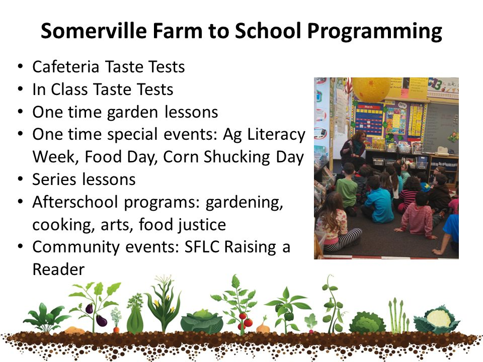 Cafeteria Taste Tests In Class Taste Tests One time garden lessons One time special events: Ag Literacy Week, Food Day, Corn Shucking Day Series lessons Afterschool programs: gardening, cooking, arts, food justice Community events: SFLC Raising a Reader Somerville Farm to School Programming