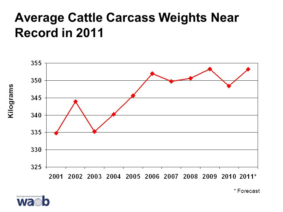 Average Cattle Carcass Weights Near Record in 2011 * Forecast Kilograms