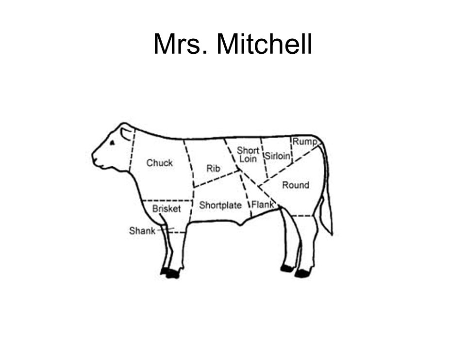 Mrs  Mitchell  Beef Primal Cuts Beef-Brisket-Whole Brisket