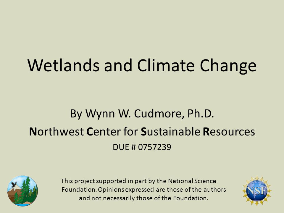Wetlands and Climate Change By Wynn W. Cudmore, Ph.D.