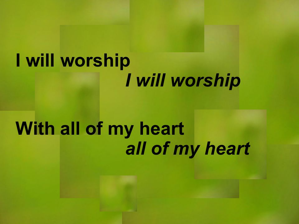 I will worship all of my heart I will worship With all of my heart
