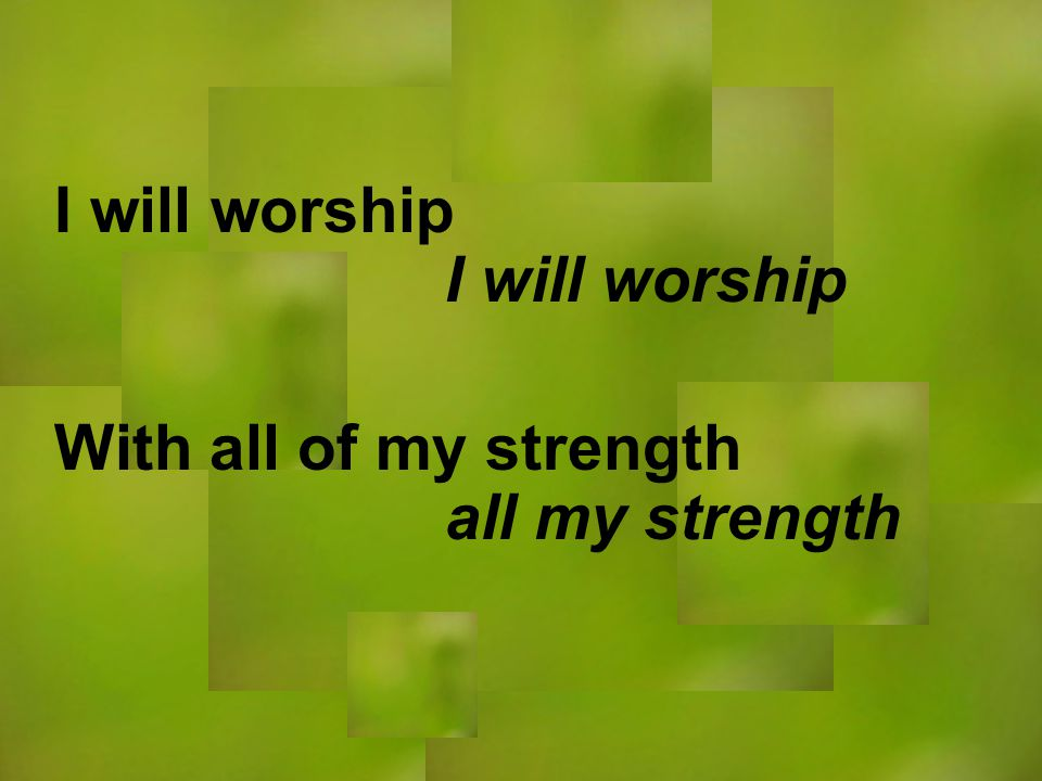 I will worship all my strength I will worship With all of my strength