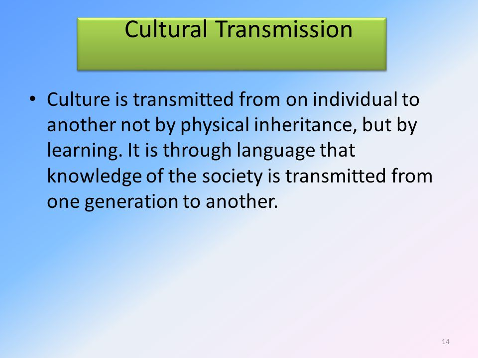 Cultural Transmission Culture is transmitted from on individual to another not by physical inheritance, but by learning.