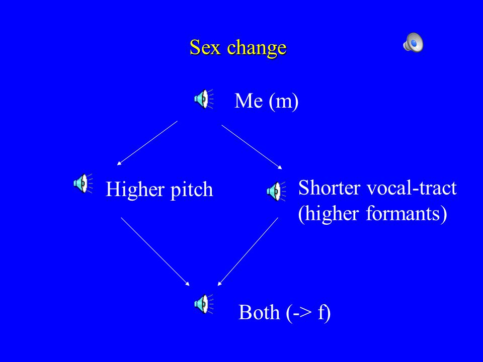 Source & Filter LarynxVocal tractOutput sound