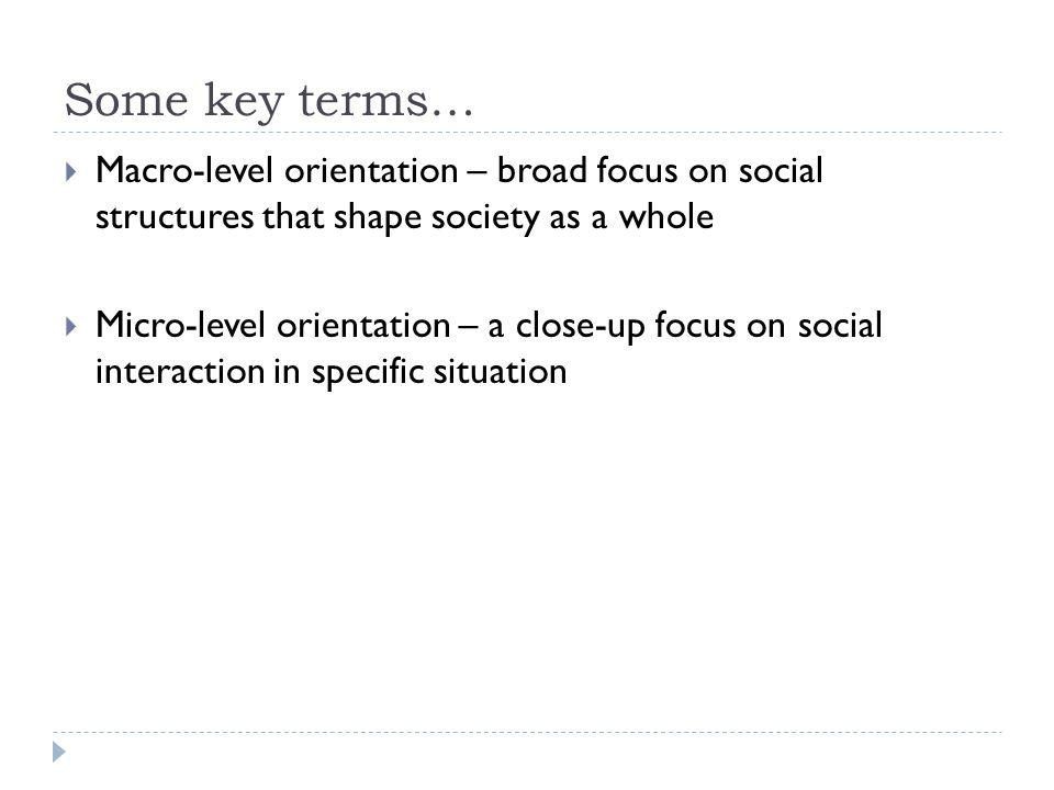 macro vs micro sociology