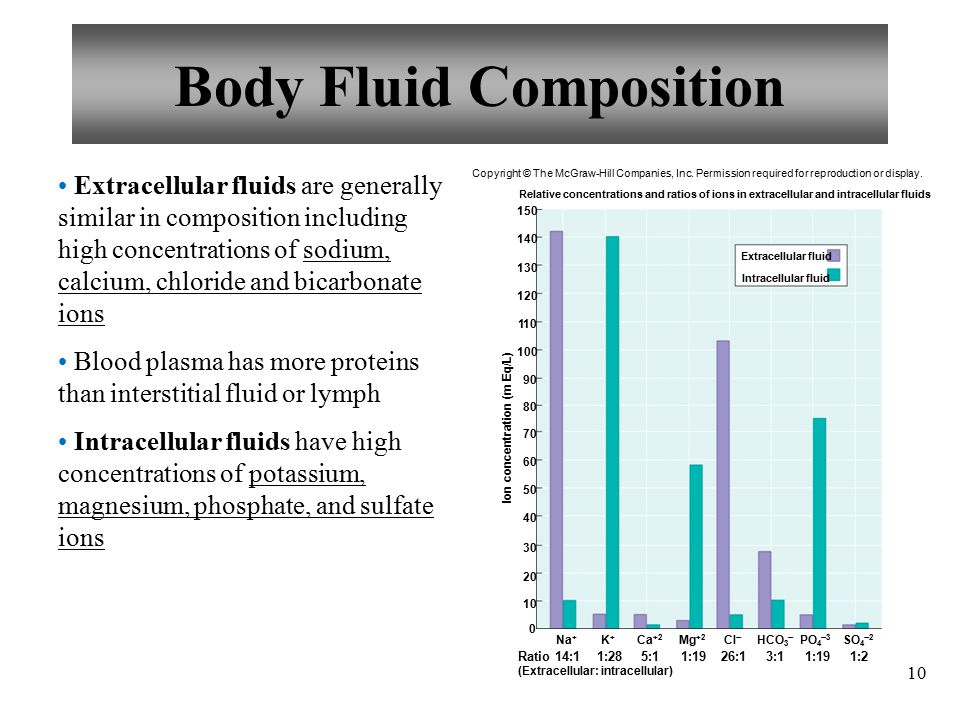 10 Body Fluid Composition Extracellular fluids are generally similar in composition including high concentrations of sodium, calcium, chloride and bicarbonate ions Blood plasma has more proteins than interstitial fluid or lymph Intracellular fluids have high concentrations of potassium, magnesium, phosphate, and sulfate ions Ion concentration (m Eq/L) Relative concentrations and ratios of ions in extracellular and intracellular fluids :1Ratio (Extracellular: intracellular) Na + 1:28 K+K+ 5:1 Ca +2 1:19 Mg +2 26:1 Cl  3:1 HCO 3  1:19 PO 4  3 1:2 SO 4  2 Extracellular fluid Intracellular fluid Copyright © The McGraw-Hill Companies, Inc.
