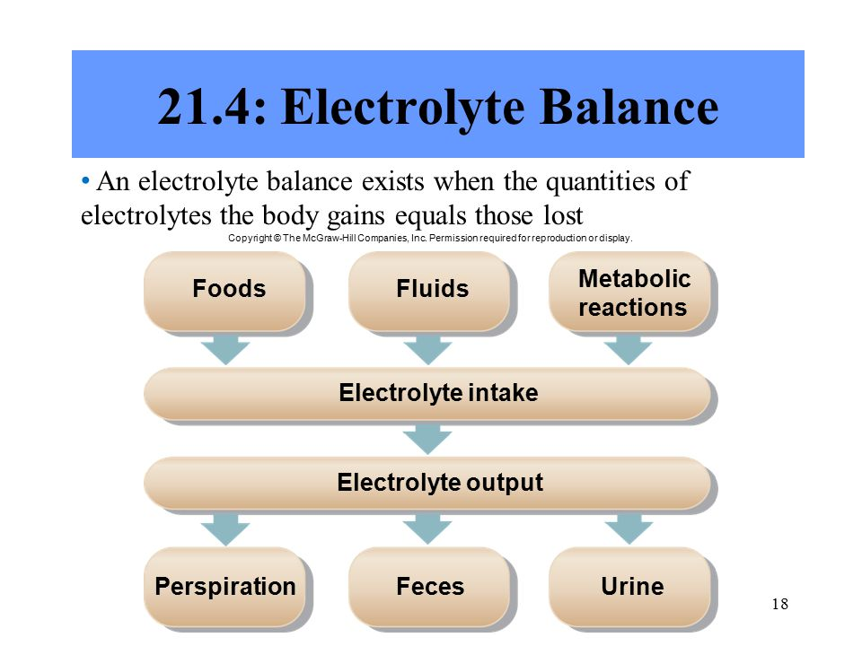 : Electrolyte Balance An electrolyte balance exists when the quantities of electrolytes the body gains equals those lost FoodsFluids Metabolic reactions Electrolyte intake Electrolyte output UrinePerspirationFeces Copyright © The McGraw-Hill Companies, Inc.