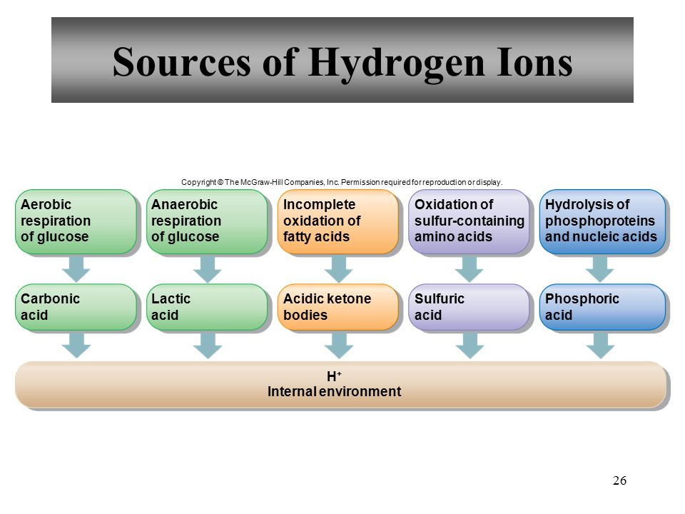 26 Sources of Hydrogen Ions Copyright © The McGraw-Hill Companies, Inc.