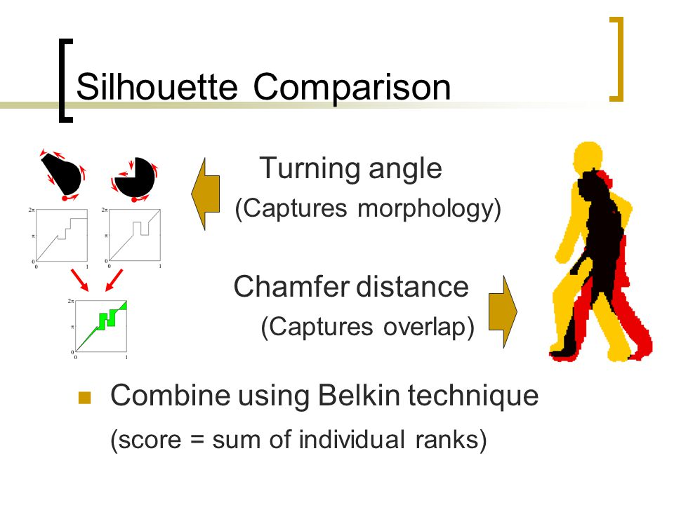 Silhouette Comparison Turning angle (Captures morphology) Chamfer distance (Captures overlap) Combine using Belkin technique (score = sum of individual ranks)
