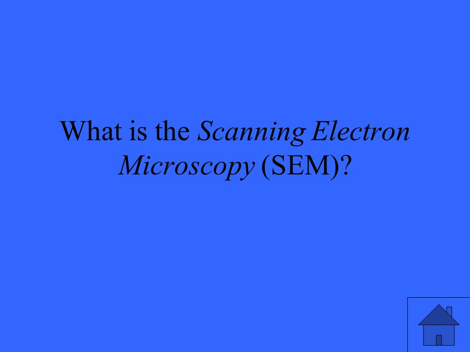 What is the Scanning Electron Microscopy (SEM)