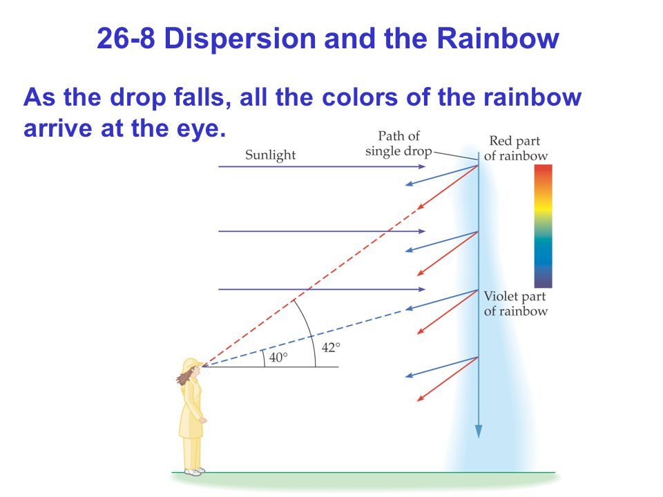 26-8 Dispersion and the Rainbow As the drop falls, all the colors of the rainbow arrive at the eye.