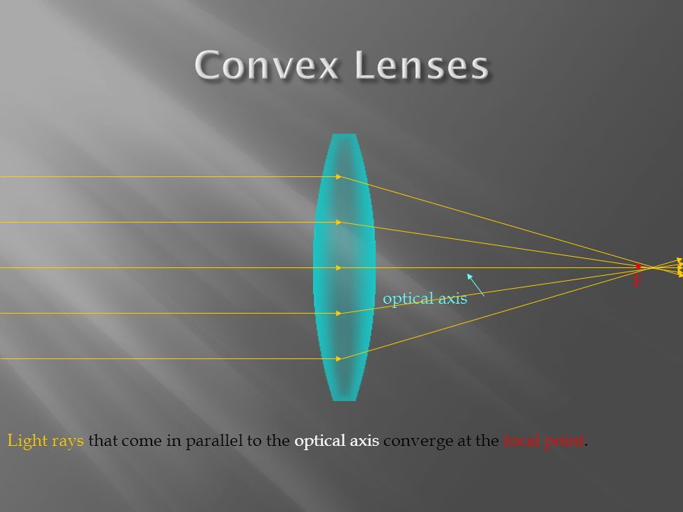 Light rays that come in parallel to the optical axis converge at the focal point. F