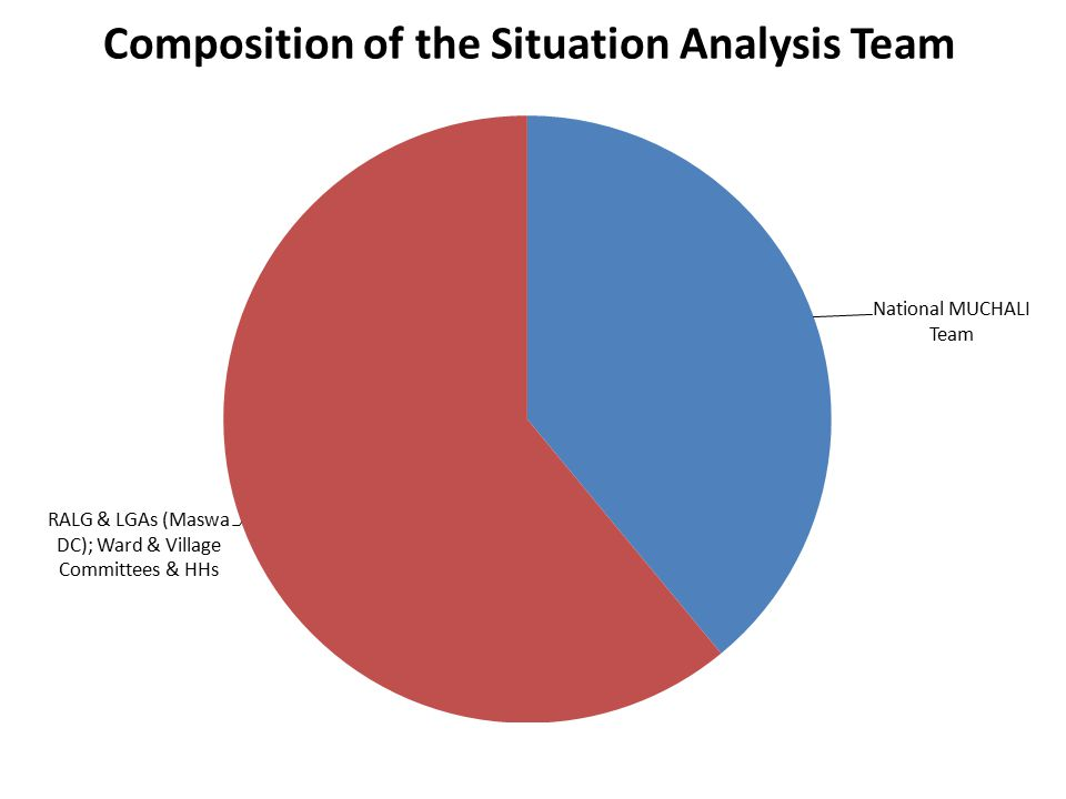 Composition of the Situation Analysis Team