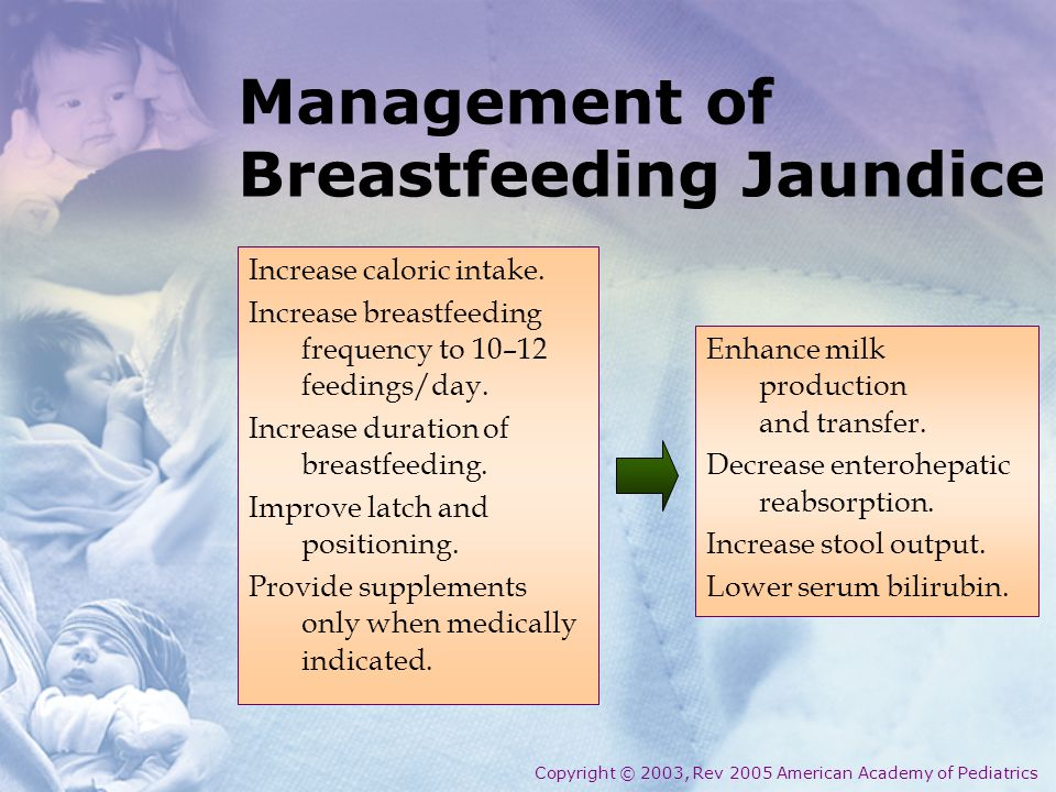 Management of Breastfeeding Jaundice Increase caloric intake.