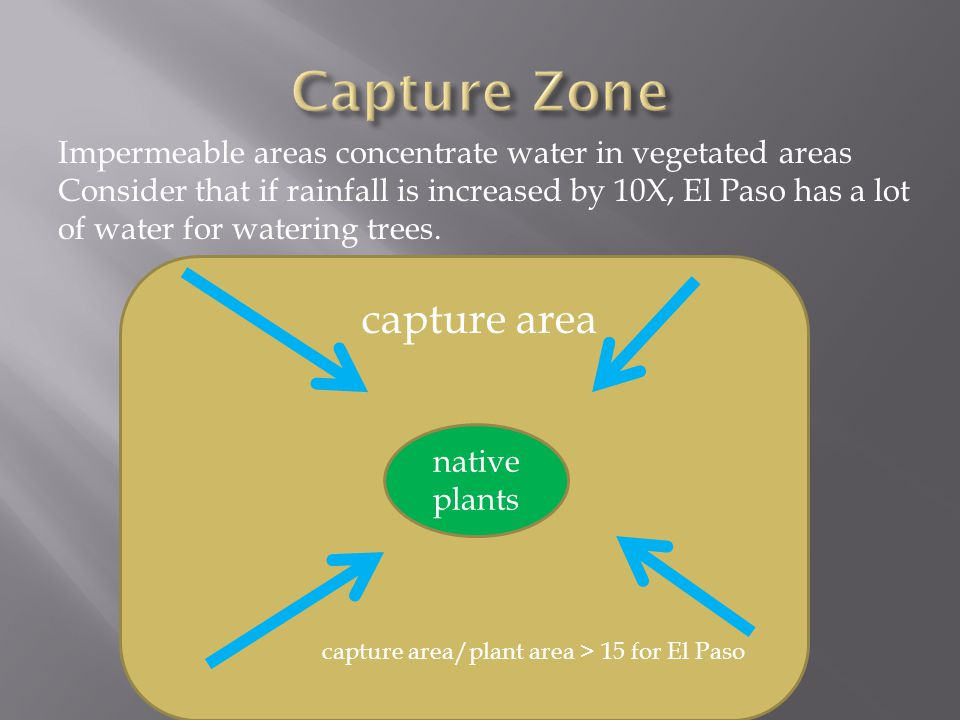 native plants Impermeable areas concentrate water in vegetated areas Consider that if rainfall is increased by 10X, El Paso has a lot of water for watering trees.