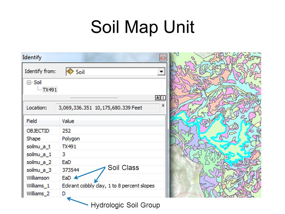 Soil Map Unit Hydrologic Soil Group Soil Class