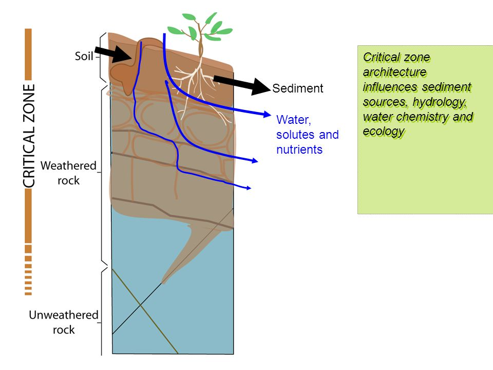 Sediment Water, solutes and nutrients Critical zone architecture influences sediment sources, hydrology, water chemistry and ecology