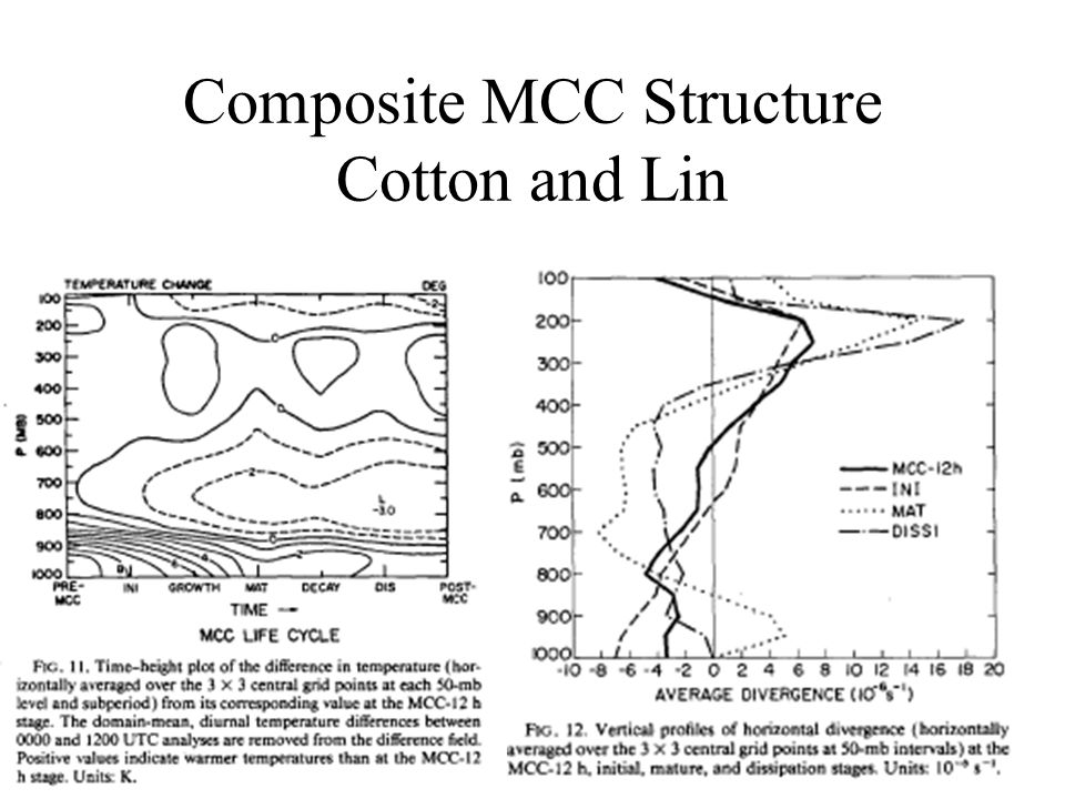 Composite MCC Structure Cotton and Lin