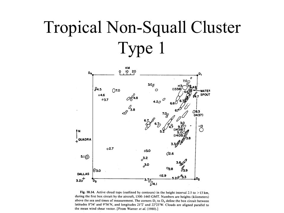 Tropical Non-Squall Cluster Type 1