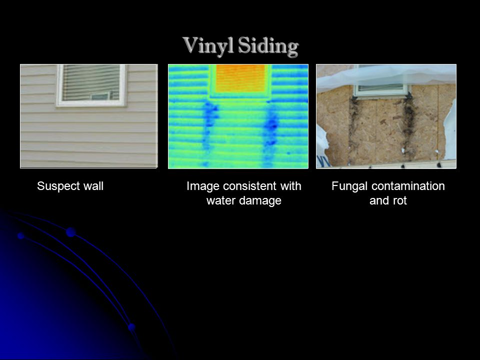 Vinyl Siding Suspect wallImage consistent with water damage Fungal contamination and rot