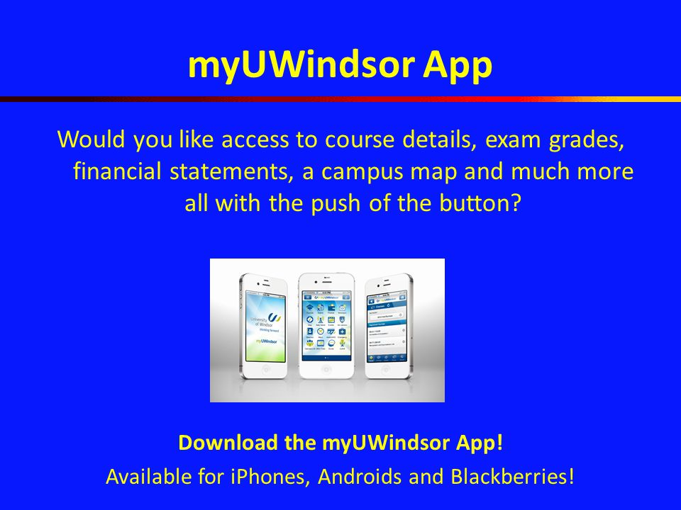 Uwindsor Campus Map.Things You Should Know About Uwindsor Uwindsor Who We Are And