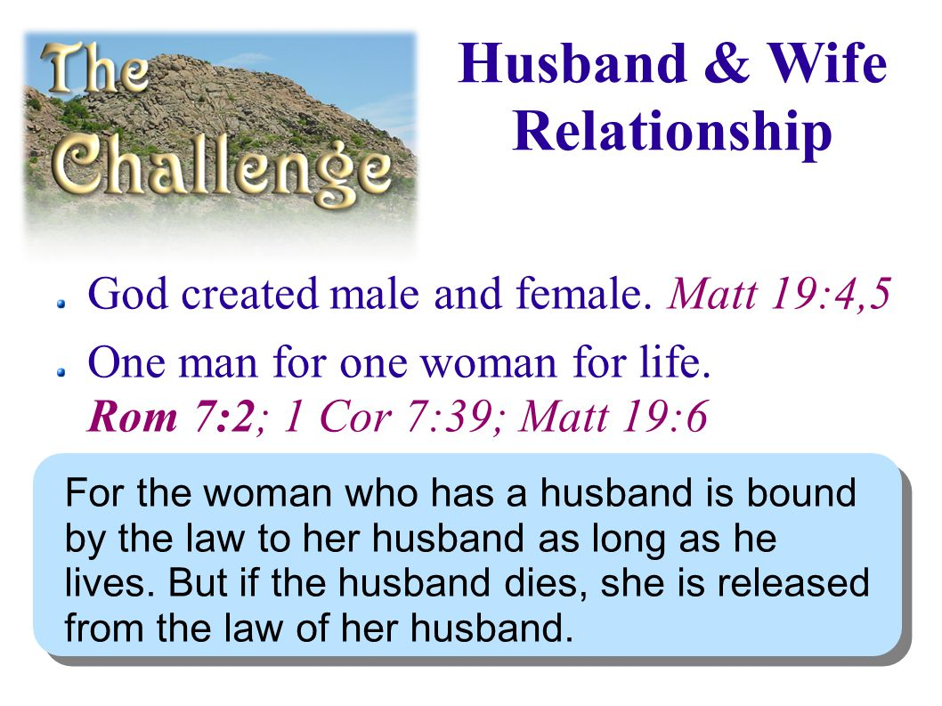 Husband & Wife Relationship God created male and female.