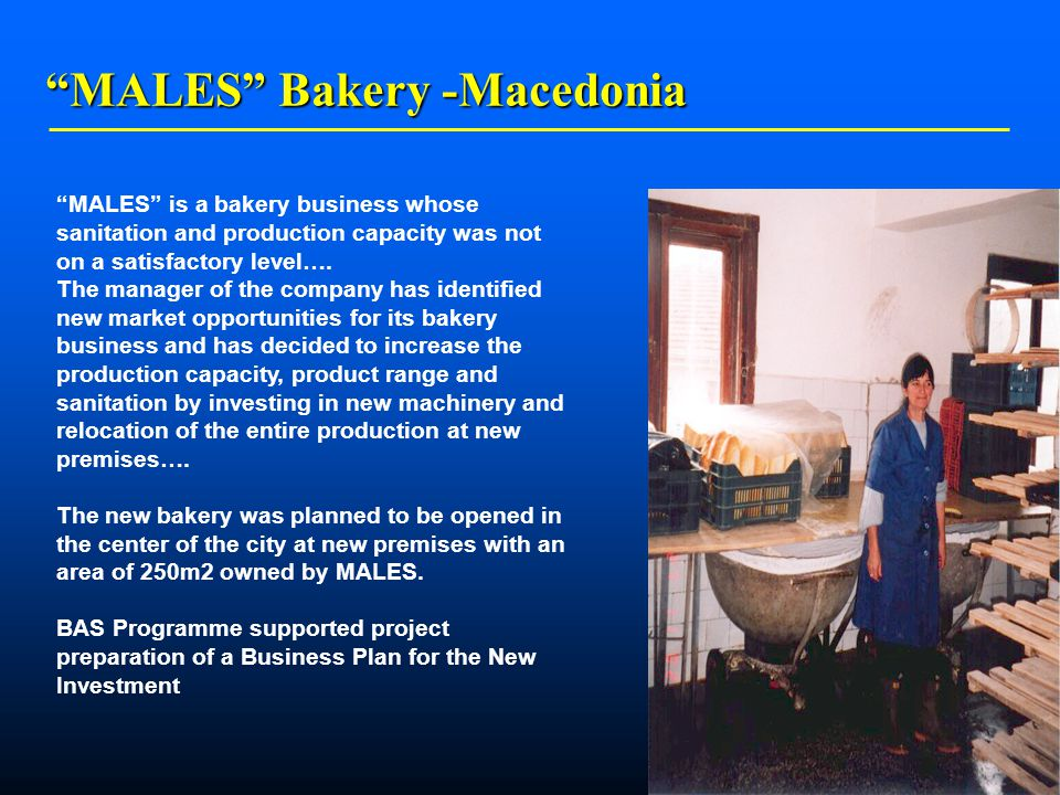    MALES Bakery -Macedonia MALES is a bakery business whose sanitation and production capacity was not on a satisfactory level….
