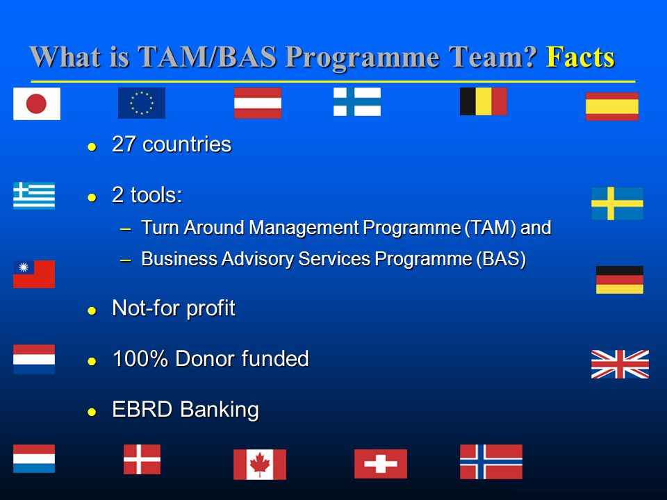    What is TAM/BAS Programme Team.